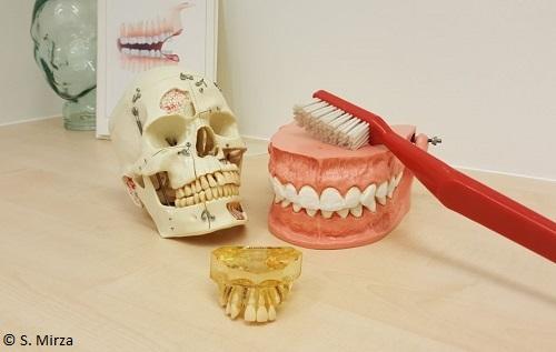 Zahnmedizinische Fachangestellte (ZFA)
