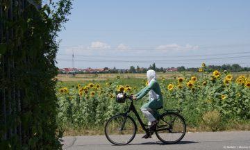Fit durch Fahrradfahren